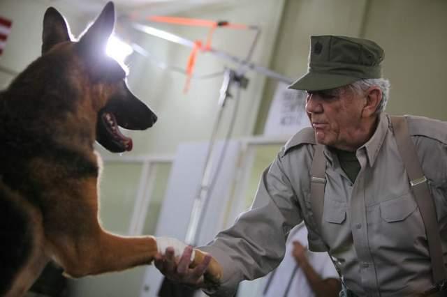 senior holding dog paw